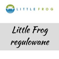 Little Frog Nosidło ergonomiczne